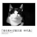 「海を渡れば猫王国  田代島」