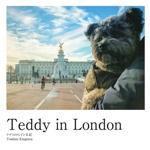 Teddy in London