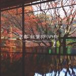 京都 紅葉狩りの旅