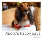 Apollo's happy days