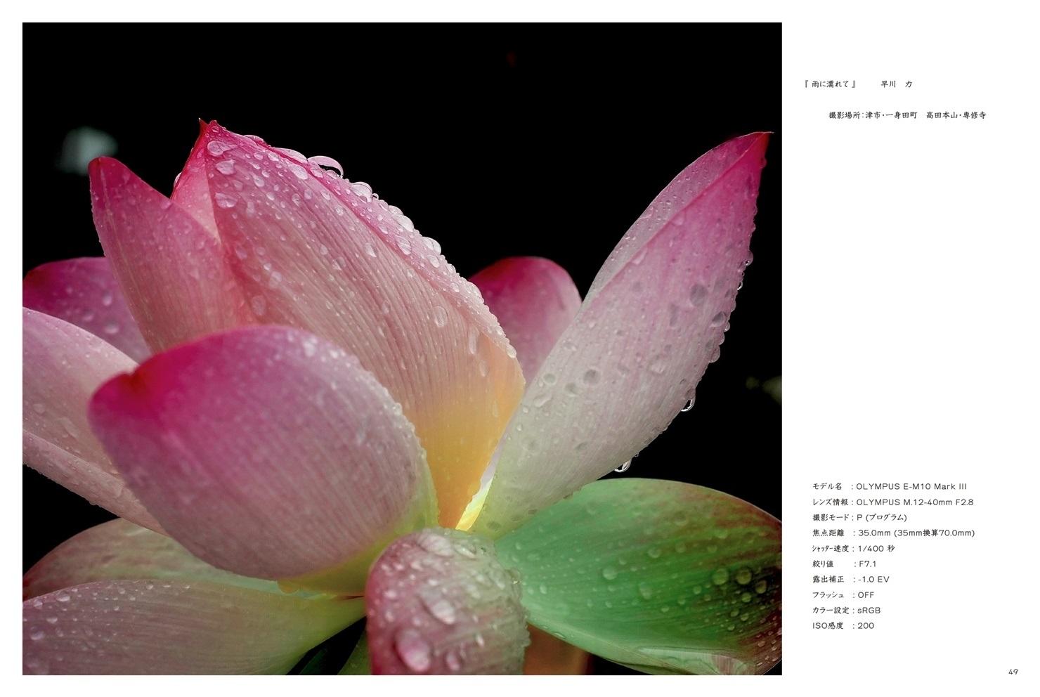 フォトブック 48ページ目