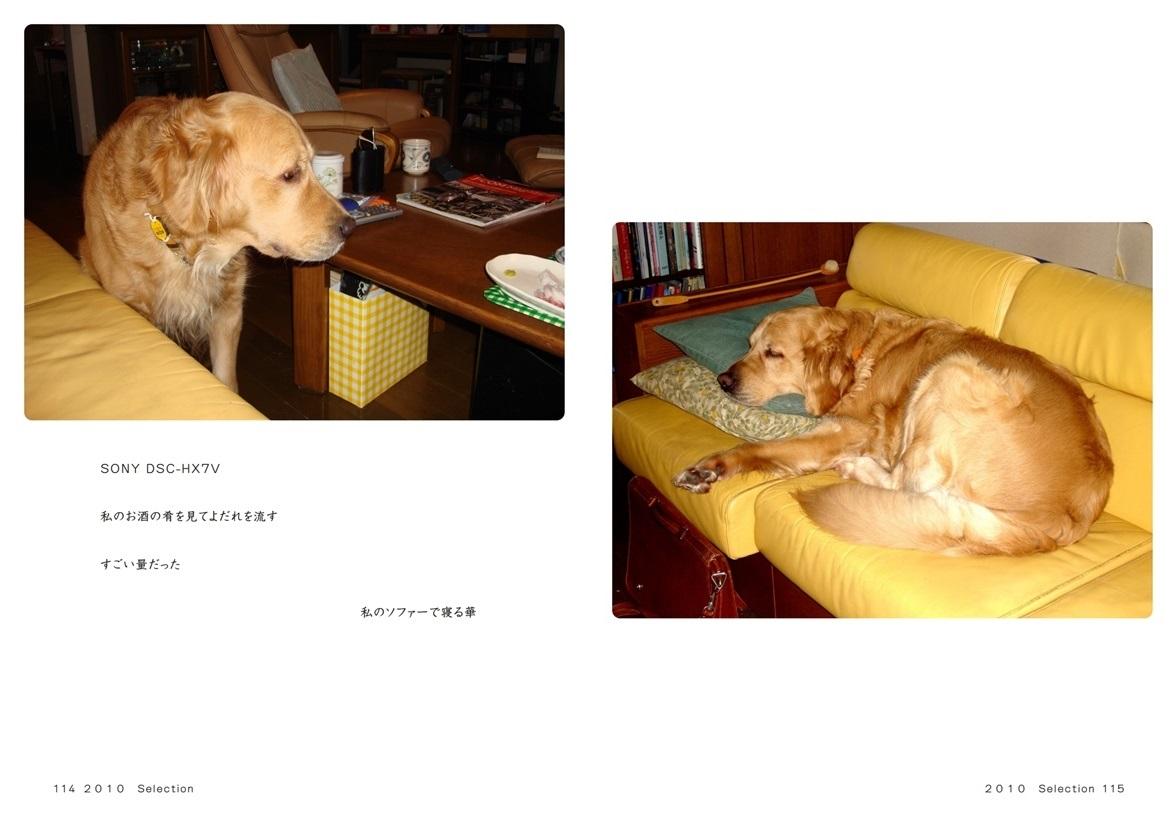 フォトブック 114ページ目